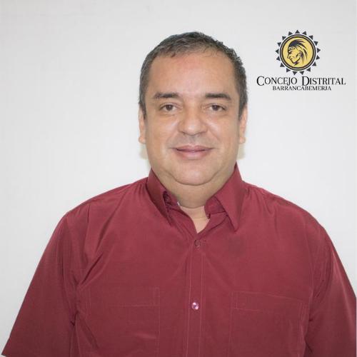 Darinel Villamizar Ruiz