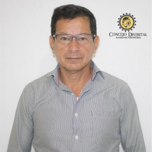 Luis E. Sánchez Palomino
